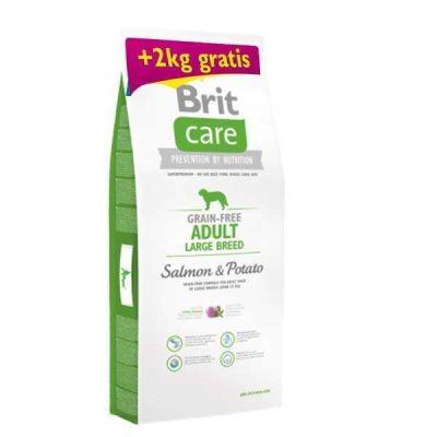 Brit Care - Brit Care Somonlu Tahılsız Yetişkin İri Irk Köpek Maması 12+2 Kg