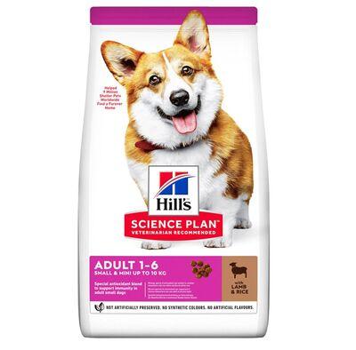 Hills - Hills Adult Small Küçük Irk Kuzulu Yetişkin Köpek Maması 6 Kg