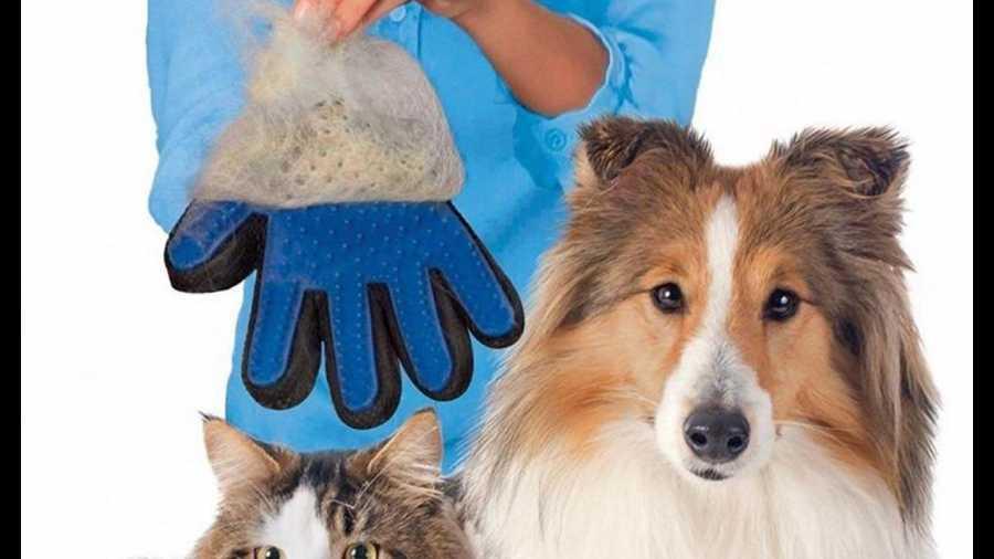 True Touch Kedi Köpek Tüy Toplama Eldiveni (KUTULU GARANTİLİ ÜRÜN)