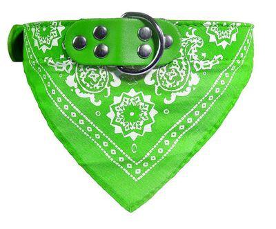 Miapet - Miapet Kedi-Köpek Fularlı Boyun Tasması Yeşil 1,5x40cm