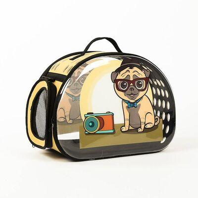 Miapet - Miapet Şeffaf Desenli Kedi Köpek Taşıma Çantası 42 x 26 x 35 cm Pug