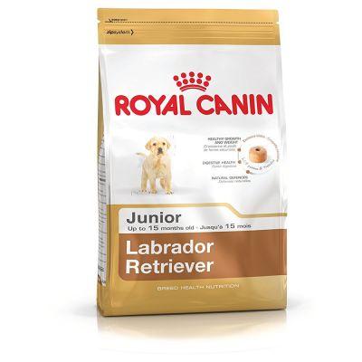 Royal Canin - Royal Canin Labrador Retriever Junior Yavru Köpek Maması 12 KG